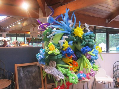 balloon coral reef