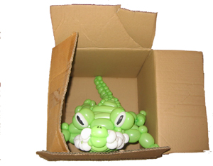 balloon crocodile in a box