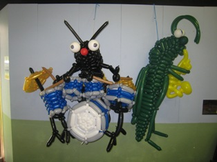 insect band